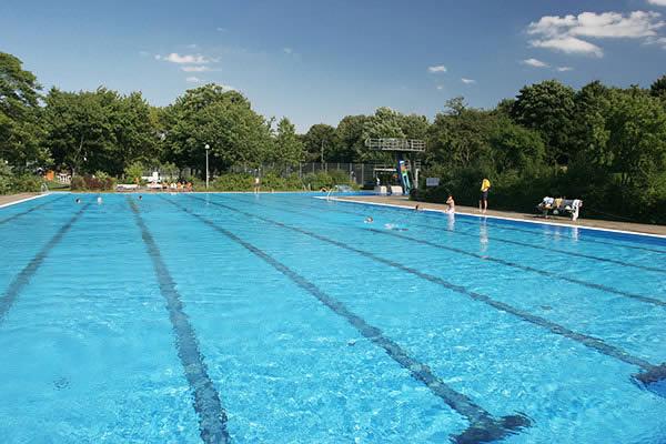 katzheideschwimmer.jpg